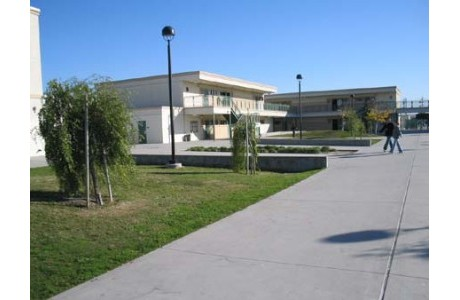 campus shots for web site 015.jpg